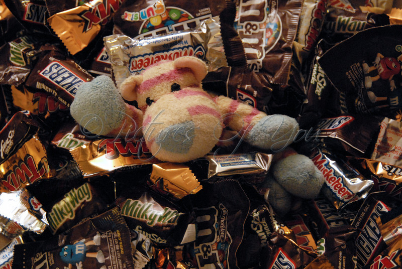 HiPpO! drowning in his Halloween candy!