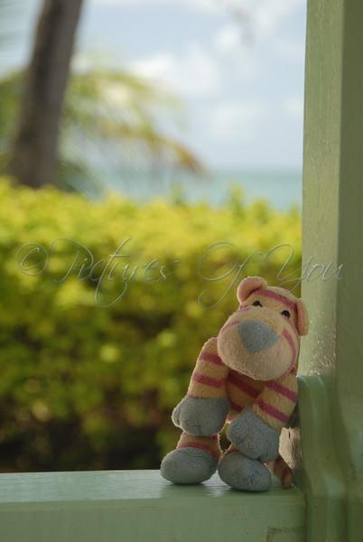 I need a vacation from my vacation!