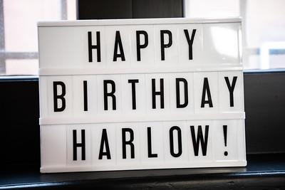 Harlow's 13 Birthday.  Photo by Venice Paparazzi