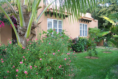 The side yard is even completely landscaped.  If you get hungry, there are banana trees, pineapple plants, a coconut palm, an avocado tree, a fig tree, and a Rio Grande cherry tree.