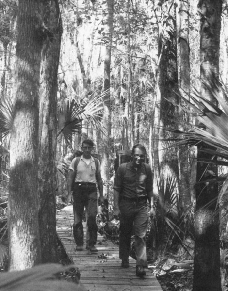1970s St Francis Trail