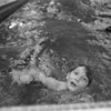 "1/28/97--swim-a-cross --Takaaki Iwabu photo-- Todd Davis, 7, works hard to match the distance he pledged as he and other American Red Cross students swim for fund raising at ""Swim-A-Cross"" at Maple Ave. School. <br /> <br /> Grapevine"