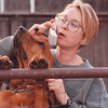 2/20/97-- blood hound --Takaaki Iwabu photo-- Cody,a 3-year-old  Blood Hound in Riverdell Farm in Cambria, gets nosy to the telephone conversation of her boss, Jody Gray, Thursday near the gate of the Farm. <br /> <br /> grapevine photo
