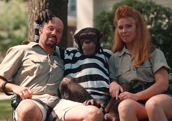 97/08/24--MONKEY 'IN AROUND--DAN CAPPELLAZZO PHOTO--KIKO, A 9-YR-OLD CHIMP, HANGS LOOSE WITH HIS OWNERS/TRAINERS CARMEN PRESTI AND CHRISTIE SCARUPA,  AT HIS HOME AND THEIRS ON LIVINGSTON AVE, NF.<br /> <br /> LOCAL