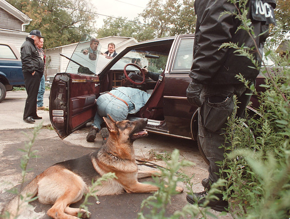 """97/10/01--Drug Raid--Takaaki Iwabu photo--Niagara Falls police officers search the drug after police dog """"Shanko"""" indicated the presence of it inside a vehicle Wednesday morning. <br /> <br /> local, Thursday, bw"""