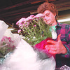 3/23/97--MUMS 5--TAKAAKI--SANBORN GREEHOUSE EMPLOYEE CAROL SHAFER COILS AND SLEEVES A POT OF MUMS FOR DELIVERY THROUGHOUT THE COUNTY.<br /> <br /> FEATURE SUNDAY