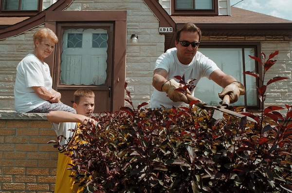 98/08/16 Helping Mom *Dennis Stierer Photo -<br /> Jean Palmeri sits on her front porch on Hyde Park Ave. as her son Louie Palmeri and grandson Louie II (the second) came up from Lewiston to help do some triming.