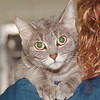 5/29/97 Pet of the Week - James Neiss Photo