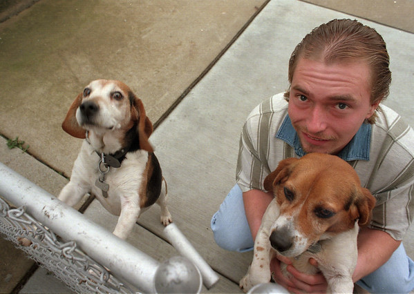 98/01/06--DOGGONE--DAN CAPPELLAZZO PHOTO--JOHN PORTO, OF 18TH STREET, SHOWS OFF HIS CHAMPION HUNTING DOGS (LTOR) LUCKEY AND RINGO ON A WARM JAN. AFTERNOON.<br /> <br /> GRAPE