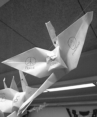 1/3/97 Steven McClinsey Story 5 - James Neiss Photo - Origami.