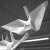 1/3/97 Steven McClinsey Story 5 - James Neiss Photo - Origami.