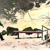 2/12/97--NATURALIST 2/WNY--DAN CAPPELLAZZO PHOTO--WNY NATURALIST BRUCE KURSHNER WALKS THE PATH AT GLEEN PK NEXT TO THE FALLS.<br /> <br /> FEAtuURE