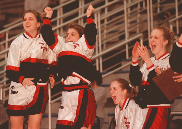 98/03/03--Falcons 2--Takaaki Iwabu photo-- Niagara-Wheatfield bench cheers their teammates during the 2nd half the section 6 championship game against Lake Shore Central. The Falcons gained the momentum in the 2nd half, but fell short at the end. <br /> <br /> tmc --EXCLUSIVE!