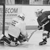 3/23/97--mite hockey--DAN CAPPELLAZZO PHOTO--BROARD ELM GOALTENDER TOM McCOMBS MAKES THE SECOND PERIOD SAVE ON ROBBIE UTZ (OR) OTZ INT HE MITE HOCKEY FINAL AT N.U. ARENA.<br /> <br /> SP