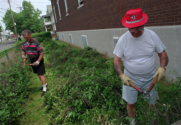 6/12/97--HEDGE TRIMMER BALL--DAN CAPPELLAZZO PHOTO--(LTOR) ST GEORGE CURCH VOLUNTEER MAINTANCE CREW RICH CAPRIO AND JOHN BARBER KEEP THE BUSHES FACING 19TH STREET CLEAN AND TRIM AT THE HISTORIC EAST FALLS STREET CHURCH.<br /> <br /> GRAPEVINE