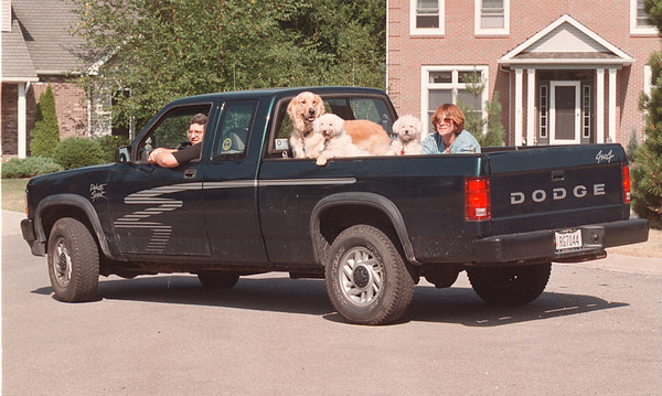 97/08/05 Gerbasi Dogs 3 - James Neiss Photo - Tom and Kathy Gerbasi and their dogs Bob, Syggy and Dan.<br /> <br /> Lewiston NY.