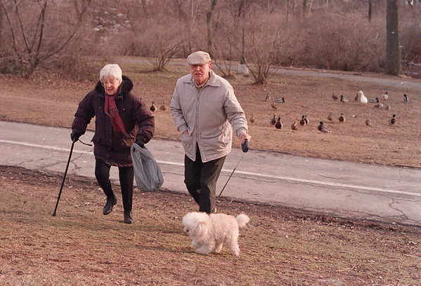 3/18/97 feeding ducks--Takaaki Iwabu photo-- Sarah Chamberland and Edward Kopacz walk away from the ducks they fed on Goat Island Tuesday.  (the two met on Island as both come there for feeding/walking and they are good friedns now...) <br /> <br /> grapevine photo