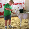 98/07/31 Bad Goat-Rachel Naber photo-Dylan Hwoes scolds his goat for jumping up on him during a kids goat show at the Orleans county fair.