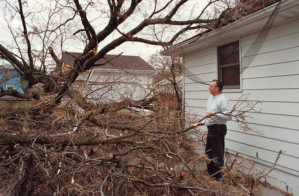 2/27/97--WEATHER/B&W 74TH ST.--DAN CAPPELLAZZO PHOTO--PAUL LeQUEUX, OF 150 74TH STREET LOOKS AT A FALLEN TREE AT THE END OF HIS DIRVEWAY THAT PUNCTURED HOLES IN THE ROOF OF HIS HOUSE.<br /> <br /> LOCAL