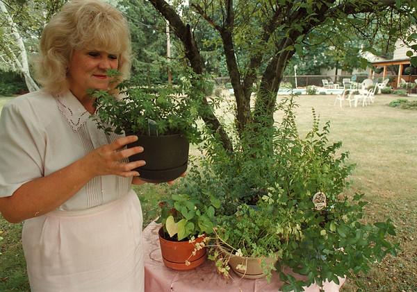 97/08/15-- health fair--Takaaki Iwabu photo-- Vicky Porfilio, holistic nurse consultant, smells an herb at her garden. (She organizes up-coming health fair) <br /> <br /> feature, Thursday, bw