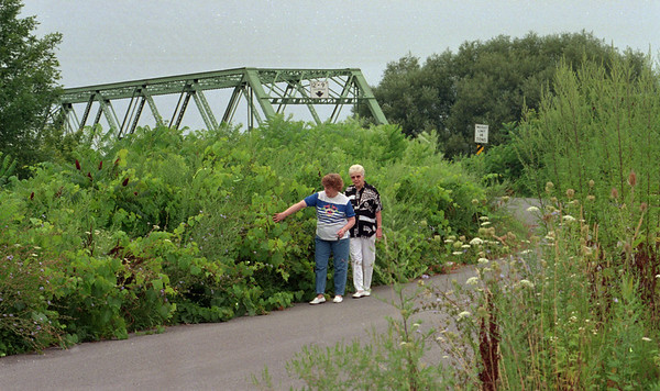 98/08/07--overgrown bridge--dan cappellazzo photo--(ltor)margaret eddy and joyce compson, both nearby residence of presbytarian rd bridge, look for the guard rail through the overgrown weed that pose a traffic hazard for the one lane bridge.<br /> <br /> medina