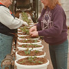"98/02/17 Spring Plants *Dennis Stierer Photo  - At the H.A. Treichler & Sons greenhouse, spring is already under way as some 23,000 hanging plants are be be readied for blooming this spring. On the left is Kathy Goss and right is Carol Kneeppel planting  ""Xanthia's""."