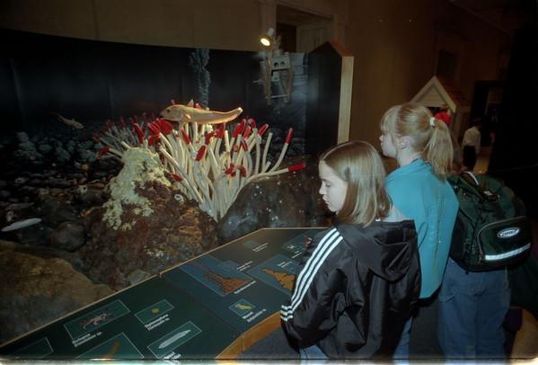 "97/11/05 In The Dark - James Neiss Photo - Buffalo Science Museum ""Deep Sea Oasis"" In the Dark Exibit."