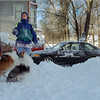 99/1/04 Weather/Catch-Rachel Naber Photo-Katie Dineen  throws up snowballs for her shelties Hazel (left) and Grady to catch after the overnight snowfall in Lockport.
