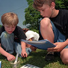 98/05/27 Science Outside2-Rachel Naber Photo-Phillip Shubbuck (left) from Dewitt Clinton School test the temperature of the pond water in a hydrology experiment with his partner Ron Graham from North Park School at Roylaton Ravine Park.