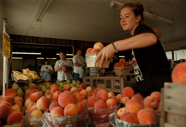 98/08/04-- farm market --Takaaki Iwabu photo-- Julie Klejdys, employee at GoodmanÕs Farm Market on Niagara Falls Blvd., stocks the shelves with fresh peaches Tuesday. --for HaleÕs story on dely on farm market at Summit Park Mall...<br /> <br /> local, bw, Wednesday