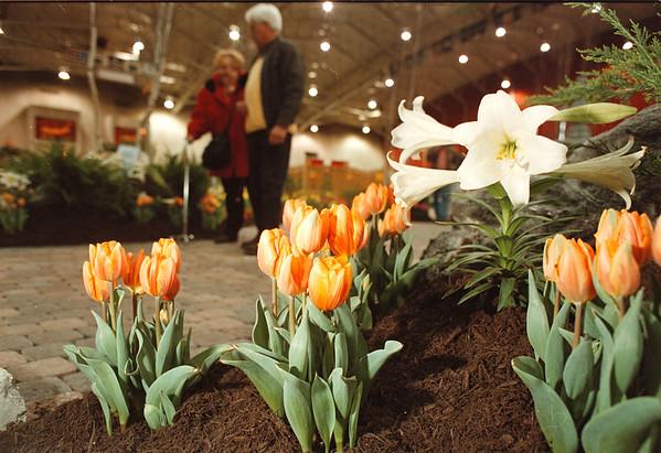 4/11/97-- flower show--Takaaki Iwabu photo--