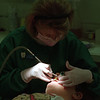 98/11/06 Cleaning Teeth *Dennis Stierer Photo -<br /> Chris Hickman, a hygienist with pediatric dentist Louis A. Surace in Lockport cleans the teeth of a patient.