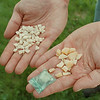 98/05/15--drugs 2--Takaaki Iwabu photo-- A Niagara Falls Police detective shows some of the crack cocaine they recently confiscated from drug users and sellers in the area. <br /> <br /> 1A, color, Sunday