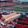 7/28/97--HOT DOG 2--DAN CAPPELLAZZO PHOTO--A BALL PARK FRANK COVERED WITH MUSTARD, LIFE DON'T GET MUCH BETTER. A PHAT DOG AT THE BALL YARD.<br /> <br /> FEATURE SUNDAY