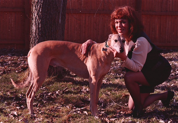 4/2/97-- greyhoud -Takaaki Iwabu photo-- Marlene Burns with her greyhound Frisco ..... for a story on adopting greyhounds....<br /> <br /> tmc photo