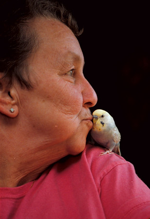 "98/11/3 Petey-Rachel Naber Photo-Sarah Jean Pacer (left) and her talking parakeet, ""Petey"" at her home in the town of Niagara."
