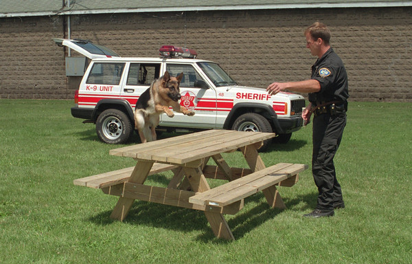 98/07/31 Dog Demo-Fair Preview *Dennis Stierer Photo - <br /> The Niagara County Sheriff's K-9 Unit will be at the Niagara County Fair to demonstrate and talk about the use of dogs in their work.  Deputy James Hildreth with his partner 'Ciro' a 16month old German Shepard patrol dog will perform demonstrations on how Ciro helps in the everyday work of patroling.