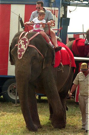 98/07/27 Circus-Rachel Naber Photo- Alaina Wilson and her father Dan Wilson of medina ride the elephants at the Orleans County fairgrounds