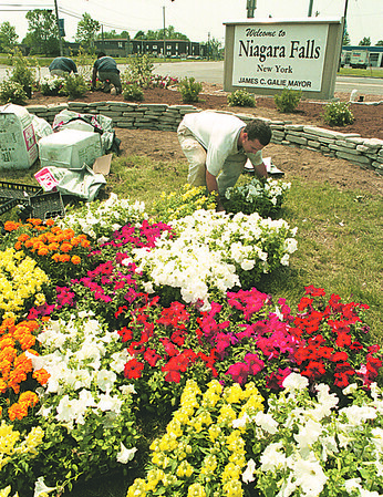 98/05/19--AIRPORT FLOWERS--DAN CAPPELLAZZO PHOTO--CHRIS WOODS, OF BLOOM-RELAX LANDSCAPING, YOUNGSTOWN, PREPARES TO PLANT MORE FLOWERS IN FRONT OF THE NF CITY SIGN ON NFB ACROSS FROM THE AIRPORT.<br /> <br /> 1A