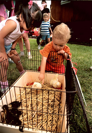 98/05/25 Wilson Fest1-Rachel Naber Photo-Mary Victoria and James Spanbauer pet the ducks at the Wilson Histroical Society Memorial day.