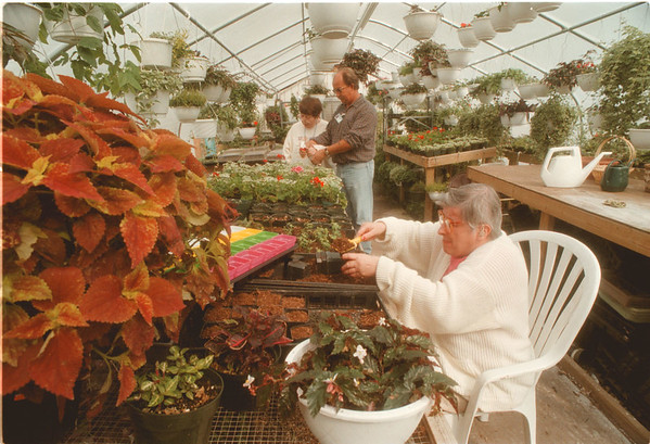 98/03/13 Green House - James Neiss Photo - Opportunities Unlimited Green House - L-R are: Back Consumer Helen Birnie and Green house coordinator robert Bracinkowski work together watering flowers as Patti Hunter, Front, also a consumer, prepares pots for plants.