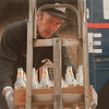 98/02/03-- Bill Miller--Takaaki Iwabu photo-- Bill Miller, an employee for Certo Brothers, Buffalo, collects empty beer bottles from Press Box on Niagara Street Wednesday. <br /> grapevine photo