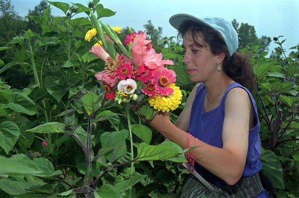 98/08/05 Petals Ent-Rachel Naber Photo-Elizabeth Rush, owner of Petals and Lace on Eagle Harbor Road creates a bouquet of wild flowers fresh from her gardens.