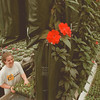 "98/03/07-- Spring 5--Takaaki Iwabu photo-- An early-bloomed ""Newguinea Impatiens"" are hanged from the ceiling. Working in photo is Meredith Christman, employee at the Stand."