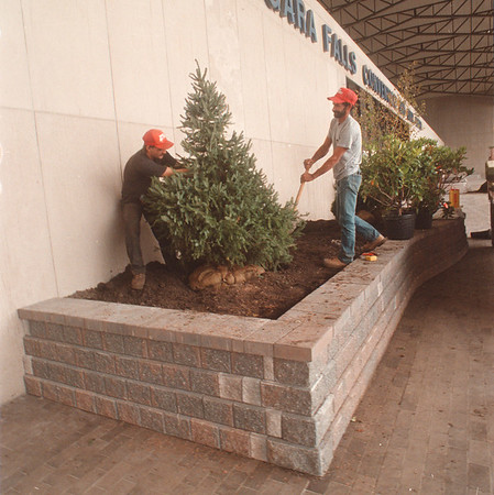 97/09/19 Convention Ctr. - James Neiss Photo - L-R - Dan Brosius, laborer and Angelo Burgio, landscape forman with Menne Nursery, plant trees and schrubs in the new planters infront of the Niagara Falls convention center.