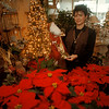 97/12/04 Evergreen Florist - James Neiss Photo - Lynn Safarian, owner of Evergreen Florist at 7620 Buffalo Ave.