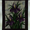 97/10/01 Quilters - James Neiss Photo - Iris Garden, a Wall hanging Quilt really shows it's brilliance as the back light brings out it's details as it hangs in a window.