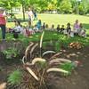 110615 Peace Garden 3 - NG