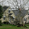 110428 wind damage12