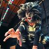 110222 Cats - NG